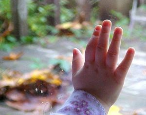 Hand-look